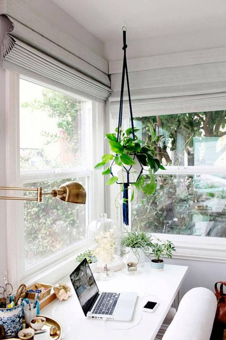 Brighten Up With Some Greenery
