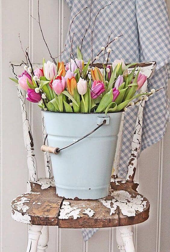 A Bucket Full of Tulips