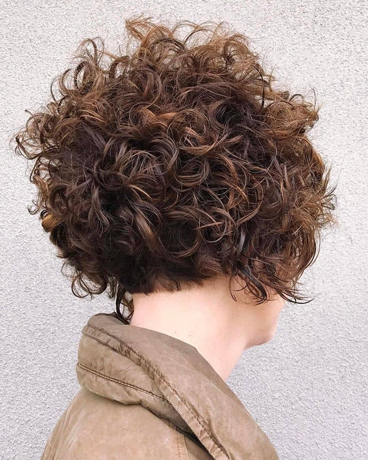 Shapely Chaos In Short Curls