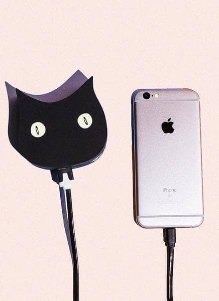 Cat Lovers Rejoice Amid Phone Charging