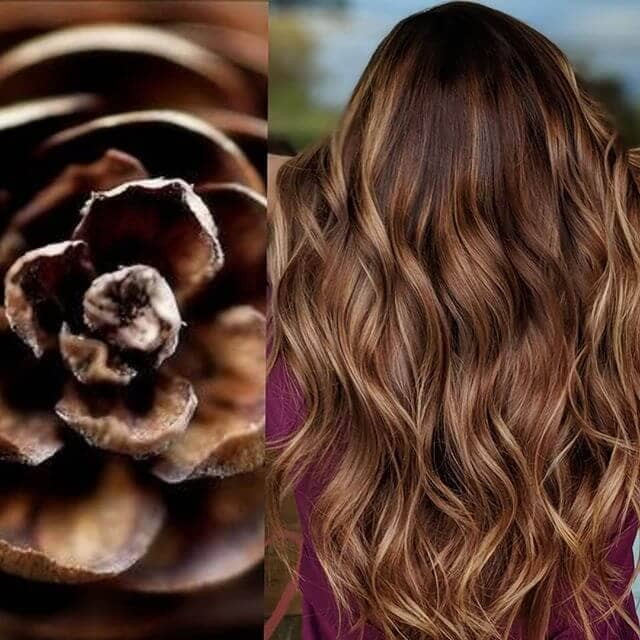 Sexy Pinecone Swirls in Molten Brown