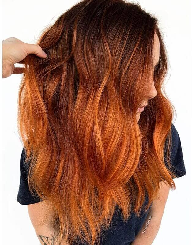Spicy Auburn and Orange Fall Color