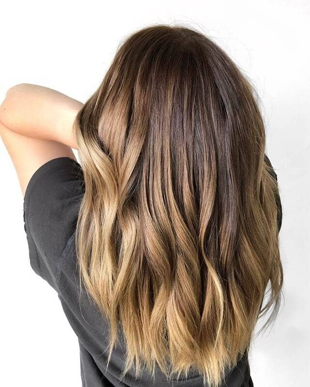 Natural Chestnut Blonde Ombre Highlights