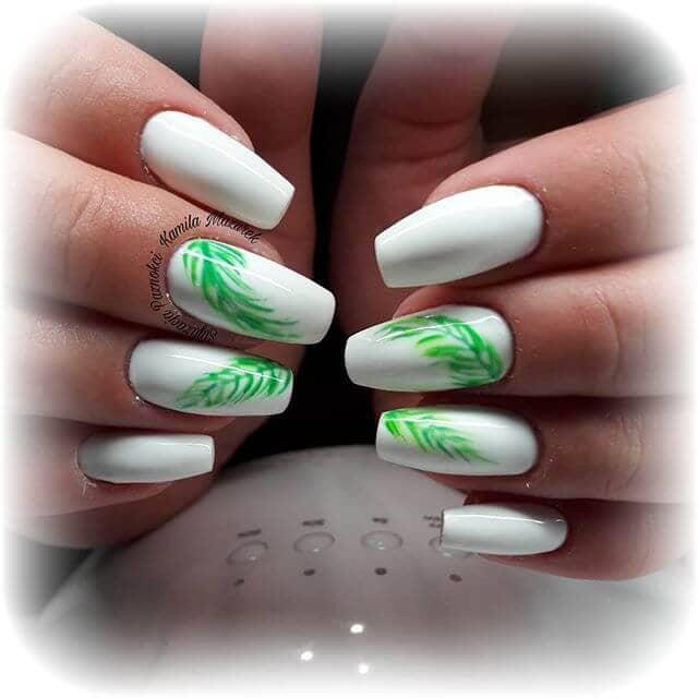Beautiful Green Foliage on Bright White