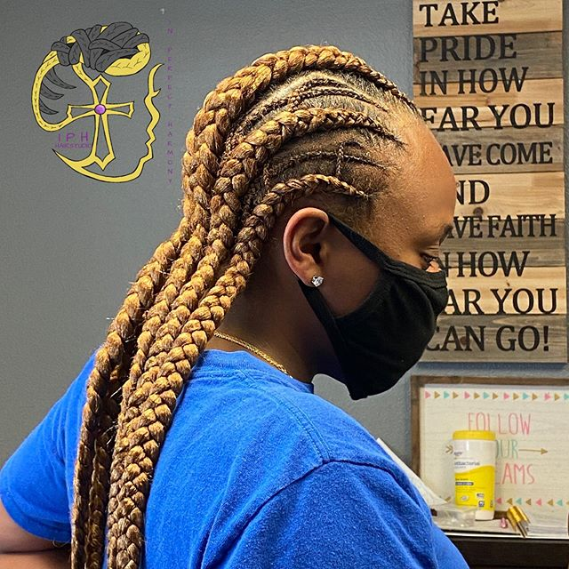 Fierce Highlighted Braids For Everyday Wear