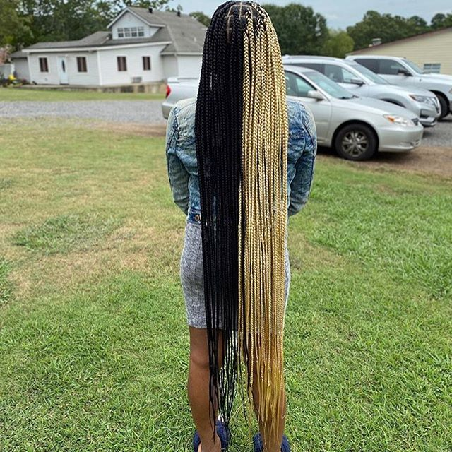 Rapunzel Blonde And Black Best Lemonade Braids