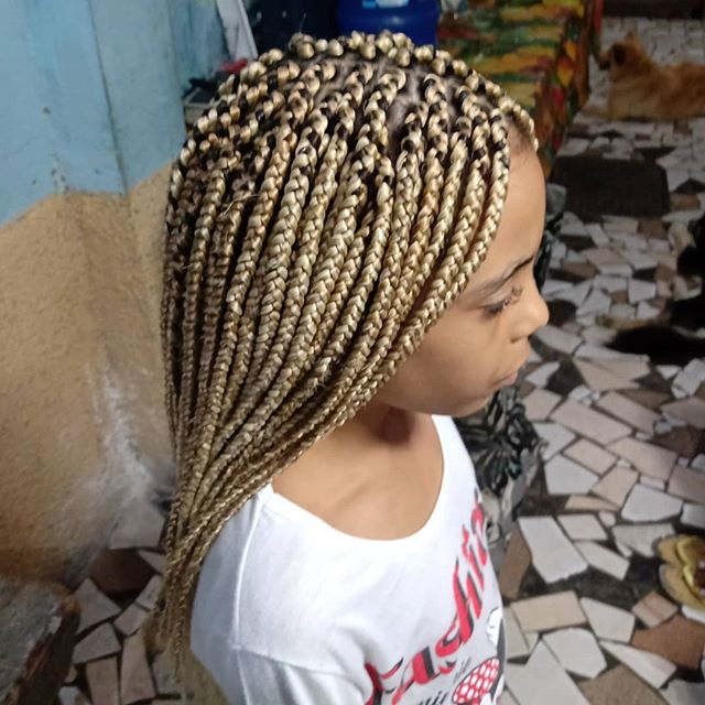 Brown-blonde Slender Box Braids
