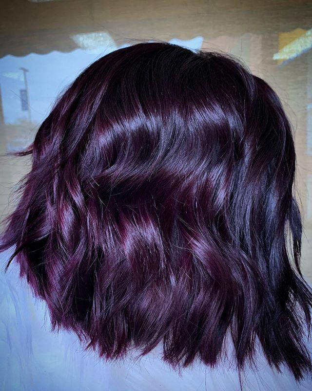 Dark Grape Colored Glimmering Bob